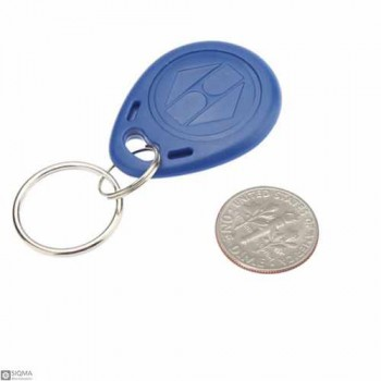 125 PCS RFID Keychain [13.56MHz]