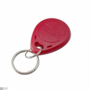125 PCS RFID Keychain [125KHz]