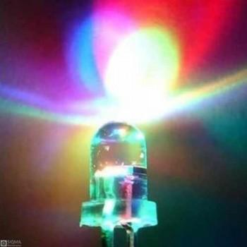 1000 PCS 5mm 2 Pin RGB LED