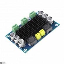TPA3116D2 Mono Digital Audio Amplifier Module [100W]